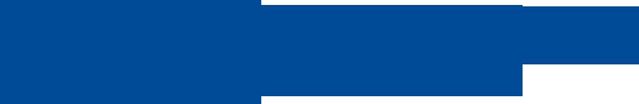 Datamovil Logo